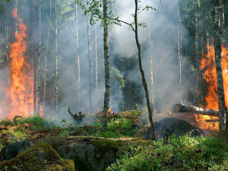 El Fuego Cambia las Cosas. Misterio, librosynovelas