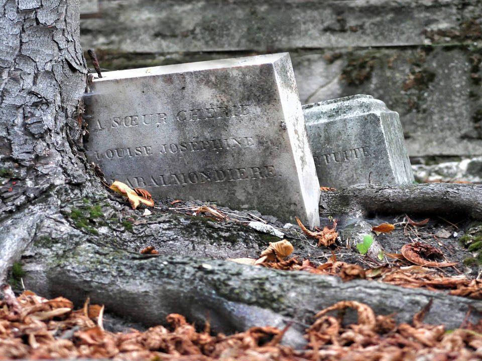 La Muerte. Aventura, librosynovelas