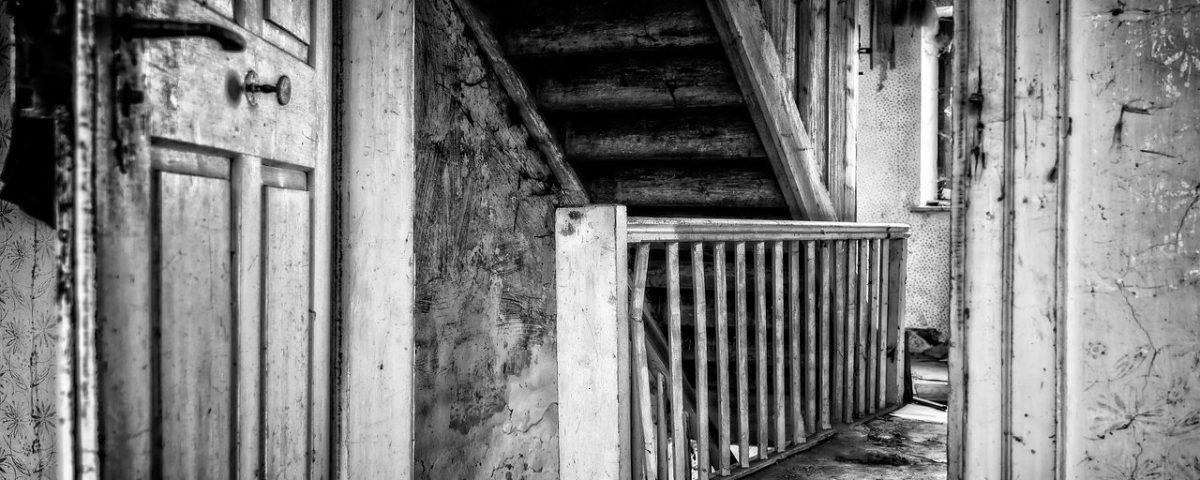 La casa de los espíritus. Crítica de libros, librosynovelas