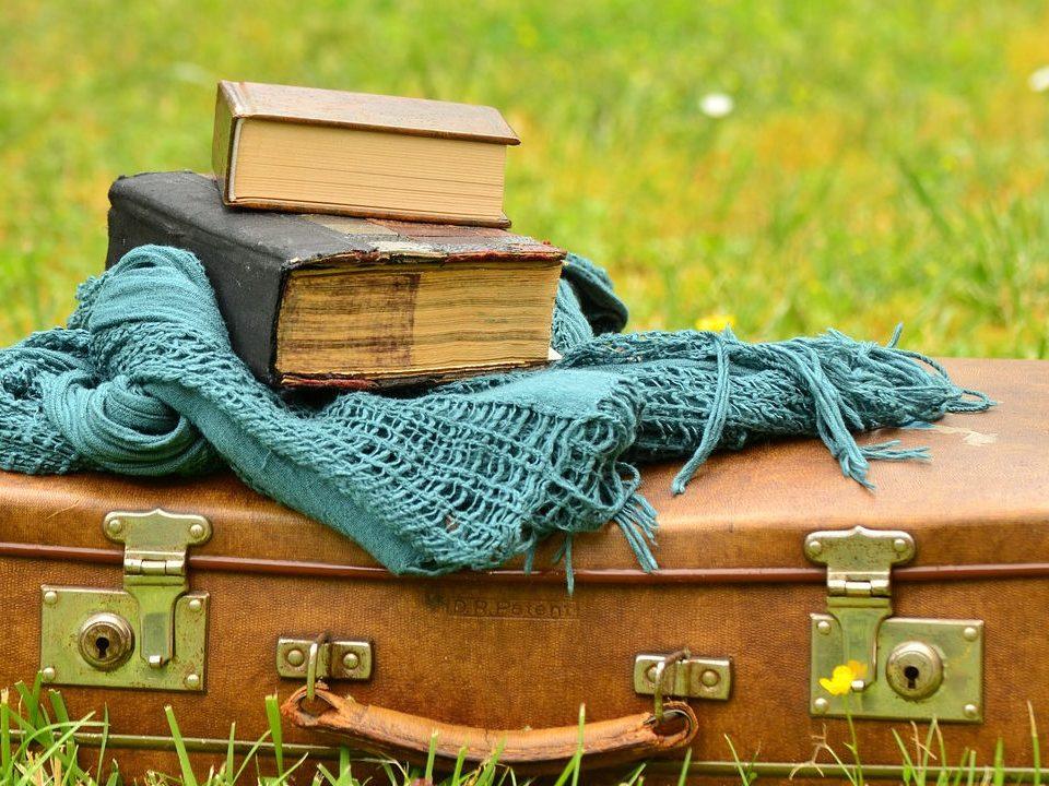 Los libros viajeros. Opinió, librosynovelas
