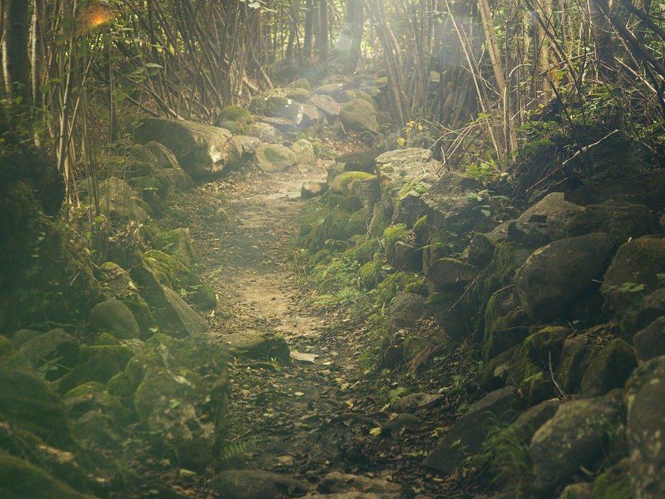 El video y la musica en Caminos cruzados. Opinión, librosynovelas (foto Splitshire)